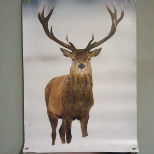 Tuinposter 'Hert'